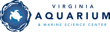 Virginia Aquarium & Marine Science Center logo