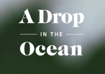 A Drop in the Ocean logo