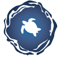 Team The Order of the Sea Turtles's avatar